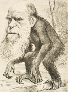 A Darwin caricature circa 1870.