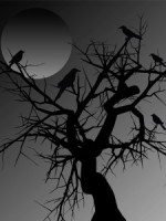 bird in tree with full moon
