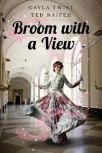 Broom With a View Cover