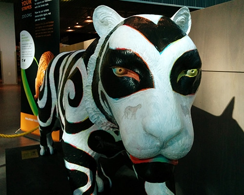 art-tiger