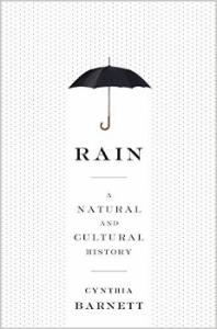 Rain cover (231x350)