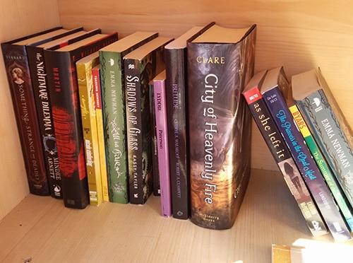 Little free library shelf