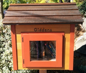 Little free library with orange paint