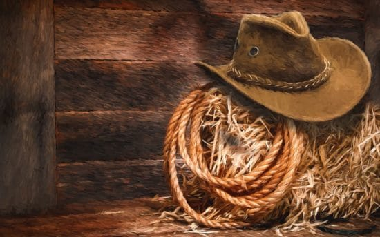 cowboy hat and rope